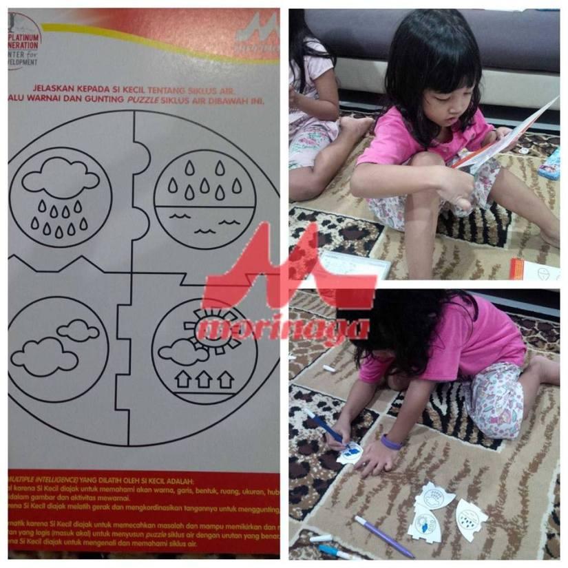 MI_Fay_puzzle_2