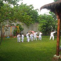 karate(24)