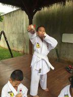 karate(7)